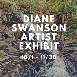 Diane Swanson Artist Exhibit @ Caldwell-Lake George Library